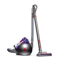 Dyson CY22 Animal + UK Cornwall